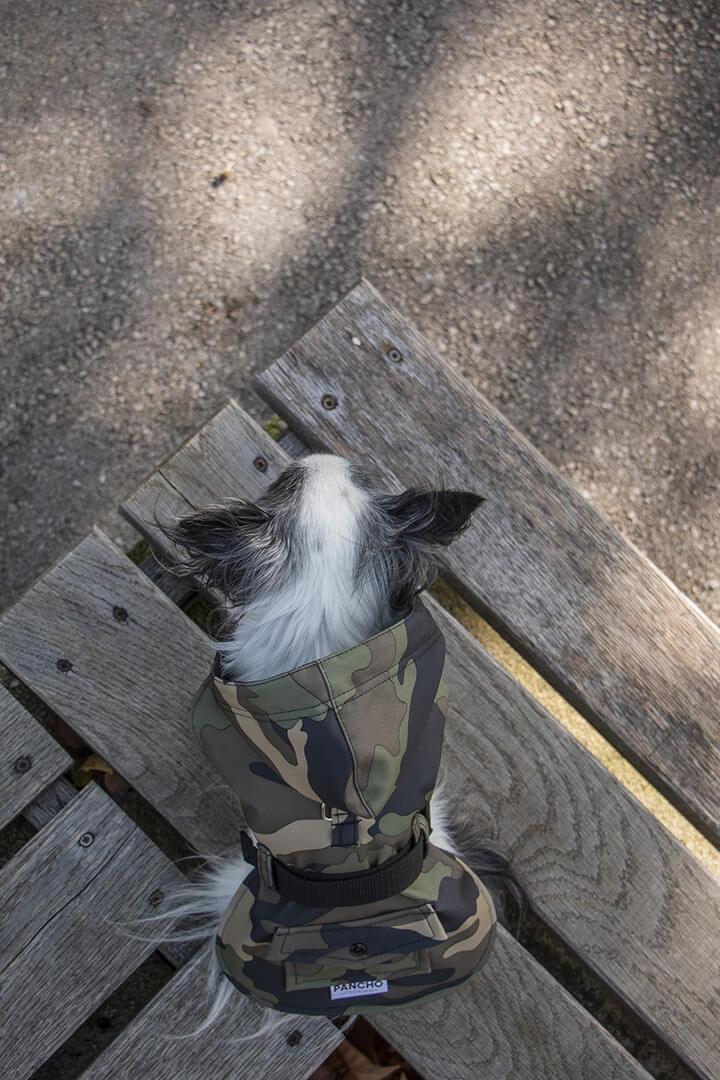 Oblacila za pse Pancho dezni chihuahua plascek Vojašček