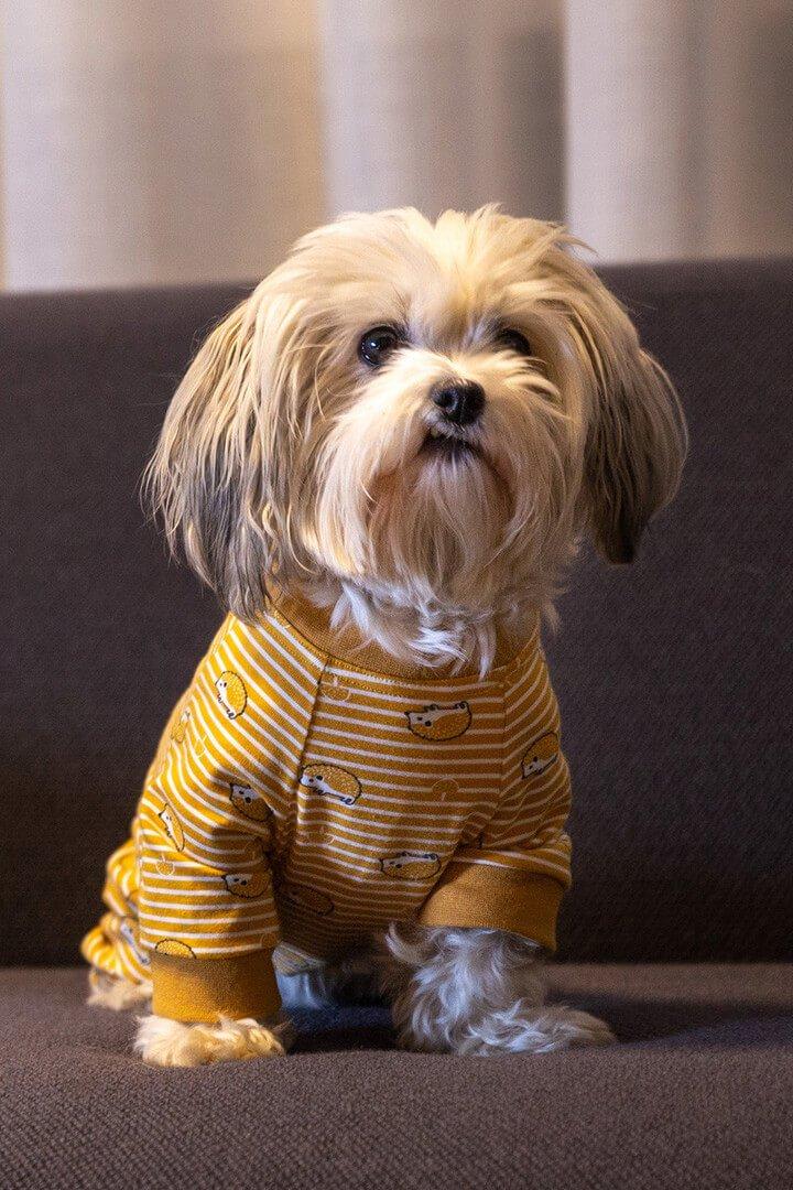 Oblačilo za pse Pancho mesancek pasja obleka jezek 1