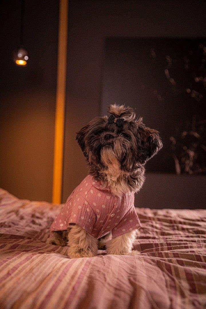 Oblačilo za pse Pancho Shih Tzu pasja obleka pizama Pika roza 1